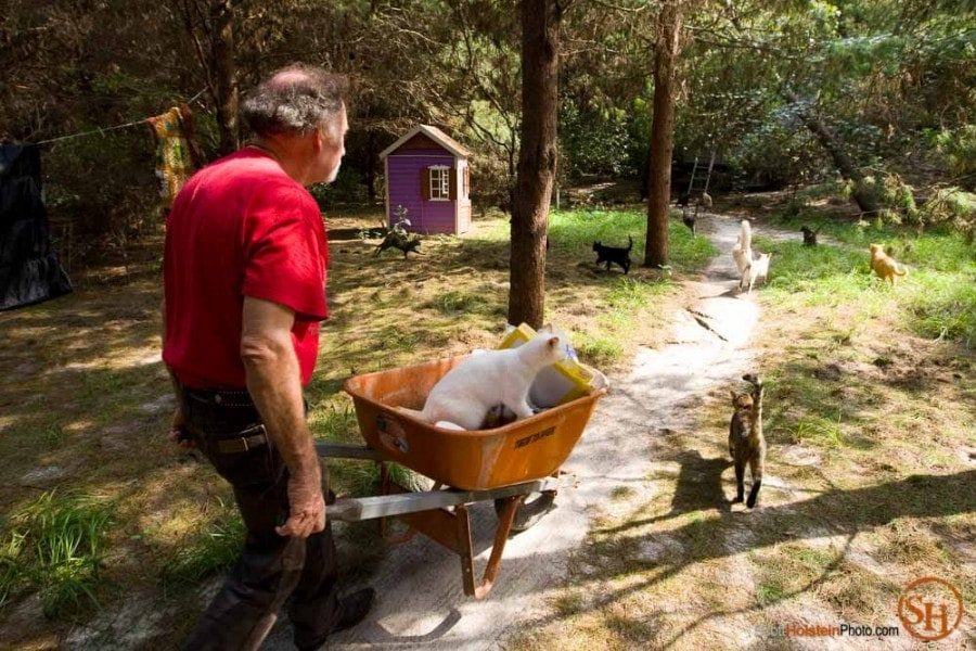 Editorial photography of a cat hitching a ride in Craig Grant's wheelbarrow at Caboodle Ranch in Florida by Scott Holstein.